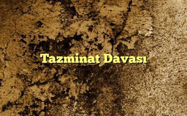 Tazminat Davası